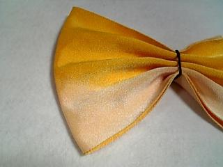 ひだの折り方(5枚扇)